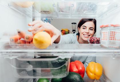 Retro Kühlschrank Hornbach : Bosch kühlschrank test bosch kühlschränke bei preisvergleich